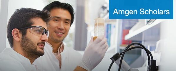 Amgen-scholars-program-banner